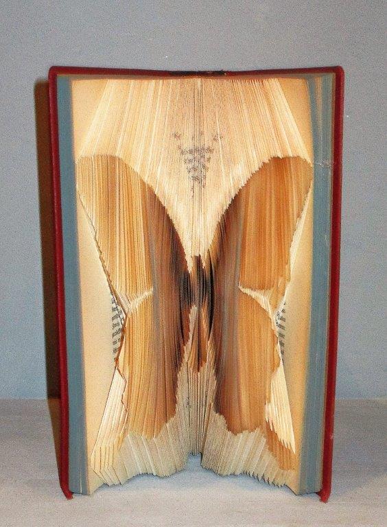 Moriel Briller Butterfly